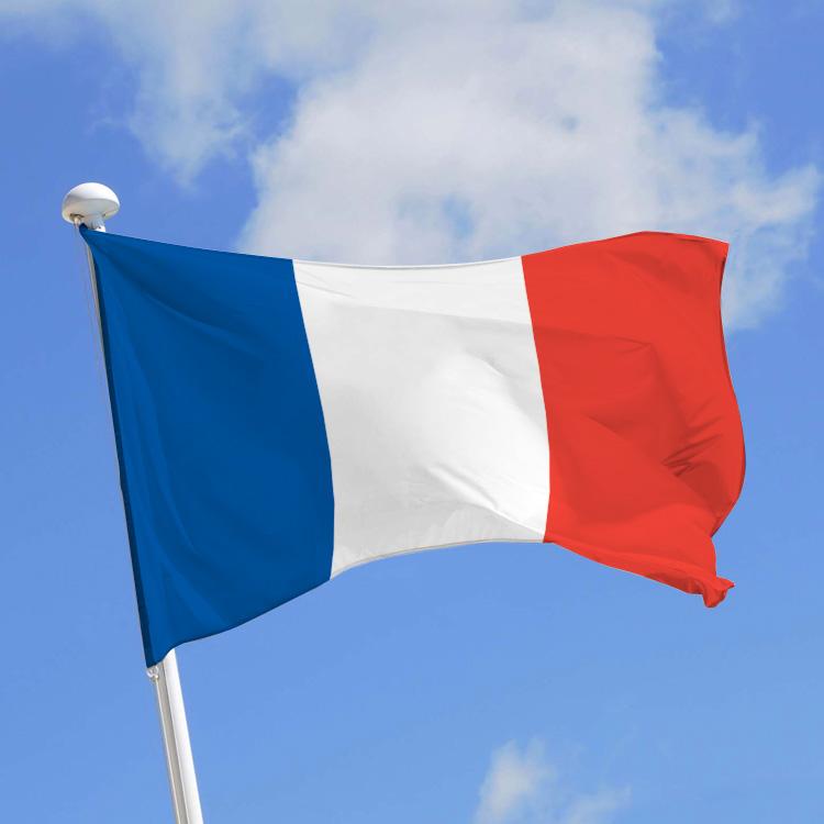 France Cyber Sécurité